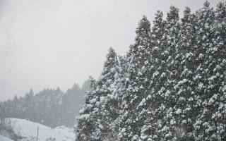東峰村 雪